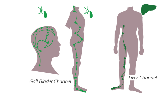 gall-balder-channels-624x375