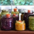 Fermenting for Gut health